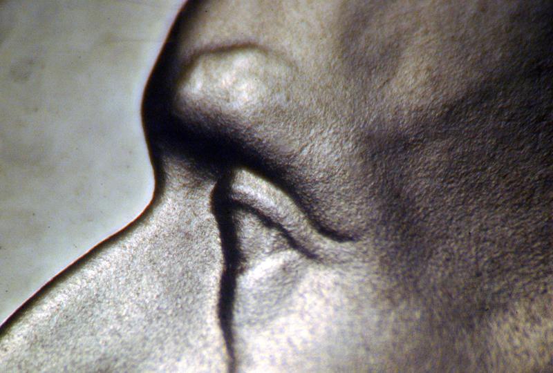 http://koinpro.tripod.com/VarietiesUS/1990S5cPrDDO001f.jpg